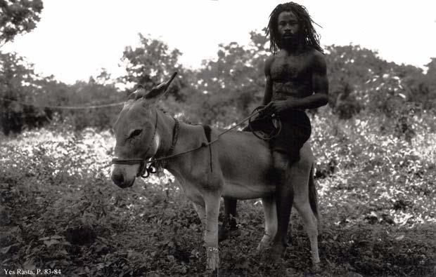 Image from Yes Rasta, as reproduced in court documents.